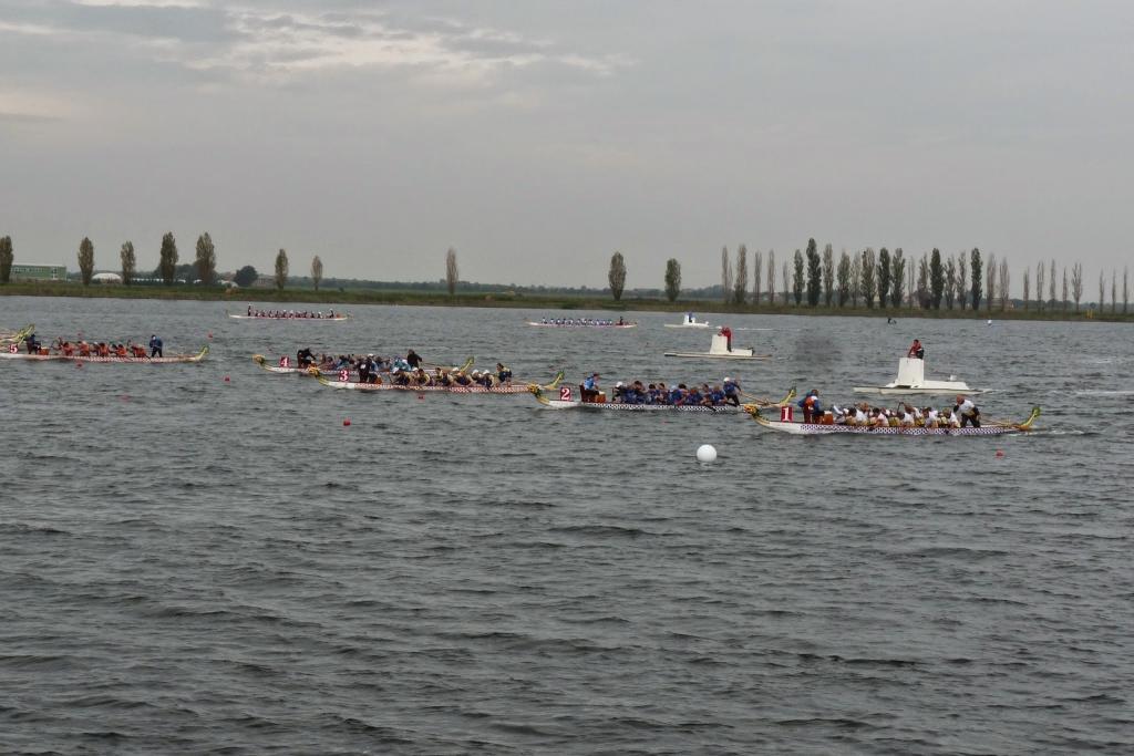 MS 2014 Ravenna